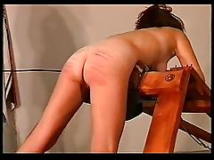 Wild Africa Caning-6 xLx