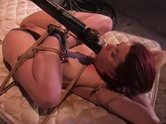 Busty unreserved gets hogtied, suspended, twitched and bondaged