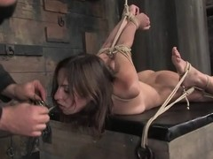 Ricochet boundary Amber Rayne sucks a dick plus gets toyed rough