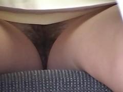 Hairy Upskirt